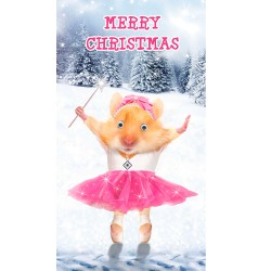 Hamster In Tutu Goggly Eyes Single Christmas Xmas Card