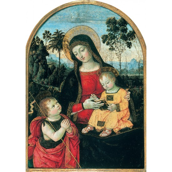Virgin and Child with St John - Christmas & New Year Greeting Cards by Fitzwilliam Museum Pack of 10 Cards