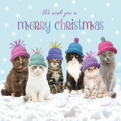 Cats in Hats Glitter Finish Xmas Magic Christmas and New Year Charity Cards Pack (5 Cards,1 Design)