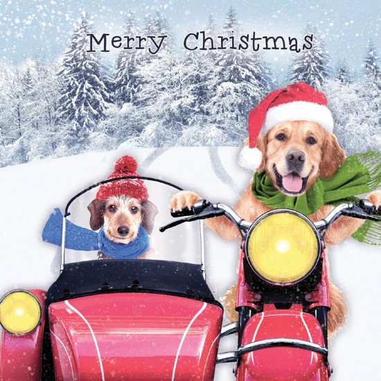 Dogs on Motorbike Xmas Gloss Finish Charity Christmas Cards 5 Pack