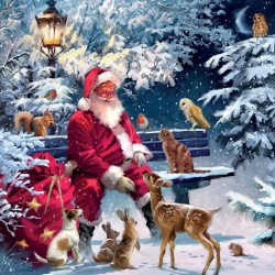Merry Santa Clause with Animal Friends Xmas Gloss Finish Charity Christmas Cards Pack (5 Cards,1 Design)