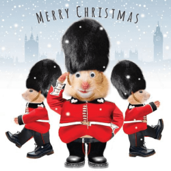 Gogglies Three Hamster Queens Guards Xmas Single Christmas and New Year Greeting Card