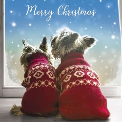 Two Westie Dogs in Xmas Jumpers Photo and Foil Finish Single Christmas and New Year Greeting Card