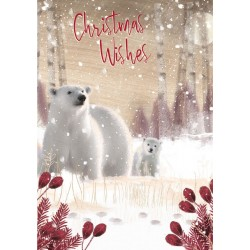 Into the Green Publishing 100% Plastic Free ECO Friendly Pack of 10 Xmas Christmas Cards with Envelopes (Polar Bear Family)