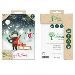 Into the Green Publishing 100% Plastic Free ECO Friendly Pack of 10 Xmas Christmas Cards with Envelopes (Sleigh Xmas Delivery)