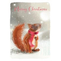 Into the Green Publishing 100% Plastic Free ECO Friendly Pack of 10 Xmas Christmas Cards with Envelopes (Squirrel in Scarf)