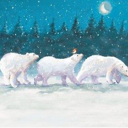 Arctic Christmas Snowy Festive Christmas Cards - Box of 12 Gloss Finish Xmas Cards