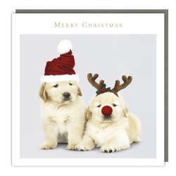 Cute Puppy Dog Friends Traditional Christmas Tracks Sparkle Charity Cards - Pack of 5 Xmas Cards
