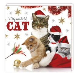 Festive To My Wonderful Cat -  Xmas Party Cats Single Christmas Greeting Card
