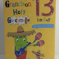 To An Amazing Grandson Holy Guacamole 13 Today Happy 13th Birthday Greeting Card