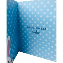 To a very special Nephew Hoppy Easter Greeting Card with bunny EAS018