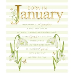 Born in January Female Snowdrop & Word Design Happy Birthday Card Lovely Verse