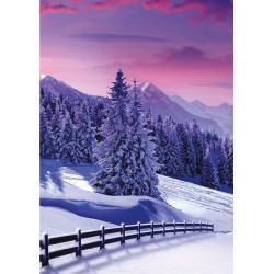 Photographic Snowy Scenes at Christmas Box Assortment of 24 Xmas & New Year Cards New for 2020 by Ling Design