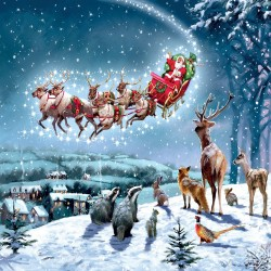 Santa's Sleigh Over The Hill Woodland Animals Christmas Single Xmas Card with an eye-popping Lenticular 3D effect