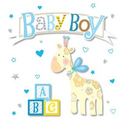Baby Boy Giraffe and Blocks Luxury Handmade 3D Card by Talking Pictures