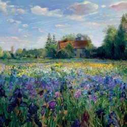 Evening at the Iris Field by Easton, Timothy (Contemporary Artist) Print Large Blank Greeting Card (C2397)