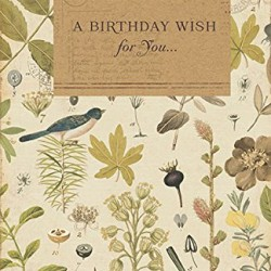 A Birthday Wish For You Birthday Card