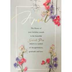 April Birthday Sweet Pea Flower of the Month Female Greeting Card