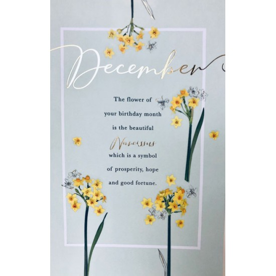December Birthday Narcissus Flower of the Month Female Greeting Card