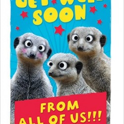 Get Well Soon From All Of Us Meerkats Long Greeting Card