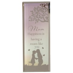 Reflections Of The Heart Mum & Daughter Glass Mirror Standing Plaque