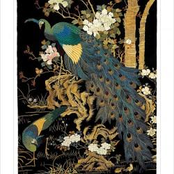 Ashmolean Peacocks Japanese Eastern Art Blank Greeting Card Woodmansterne