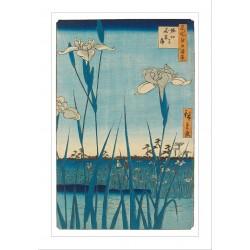 Horikiri Iris Garden Ashmolean  Japanese Eastern Art Blank Greeting Card Woodmansterne