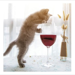 Just One Glass Funny Cat Blank Greeting Card Humorous Card for Cat Lovers - Cattitude by Woodmansterne - 468438