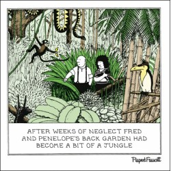 In the Jungle Back Garden - Humorous Blank Card - Fred by Rupert Fawcett