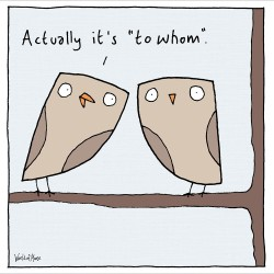Owls To Whom Grammar - Funny Humorous Blank Greeting Card by World of Moose - Woodmansterne