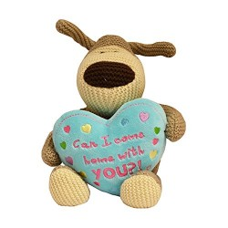 """Boofle 8"""" Can I Come Home With You Teddy Bear"""