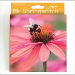 Bumblebee and Harvest Mouse BBC Springwatch World Range Blank Notecards
