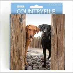 Dogs BBC Countryfile World Range Blank Notecards