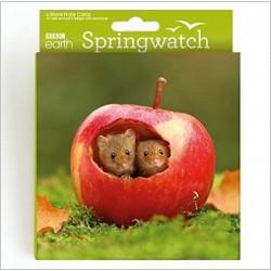 Mice in Apple BBC Springwatch World Range Blank Notecards