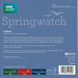 Swallows BBC Springwatch Range Blank Greeting Card