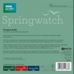 European Robin BBC Springwatch Range Blank Greeting Card