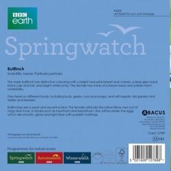 Bullfinch BBC Springwatch Range Blank Greeting Card