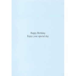 Special Grandson Birthday Foiled Greeting Card By Second Nature