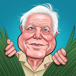 David Attenborough Really Wild Cards Blank Sound Greeting Card